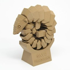 Free 3D printer file Save pangolins, Amao
