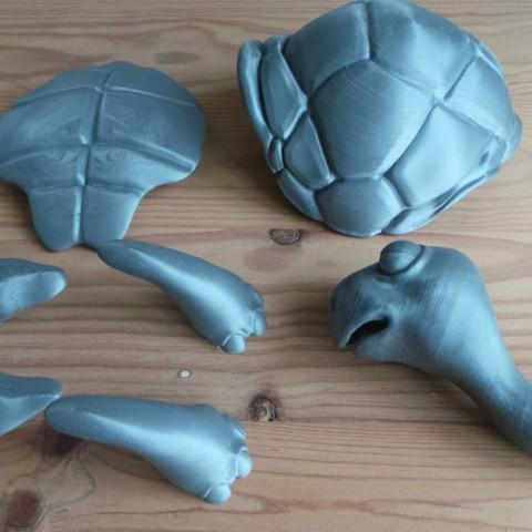 20180429_184805.jpg Download STL file Turtle • 3D print model, didoff