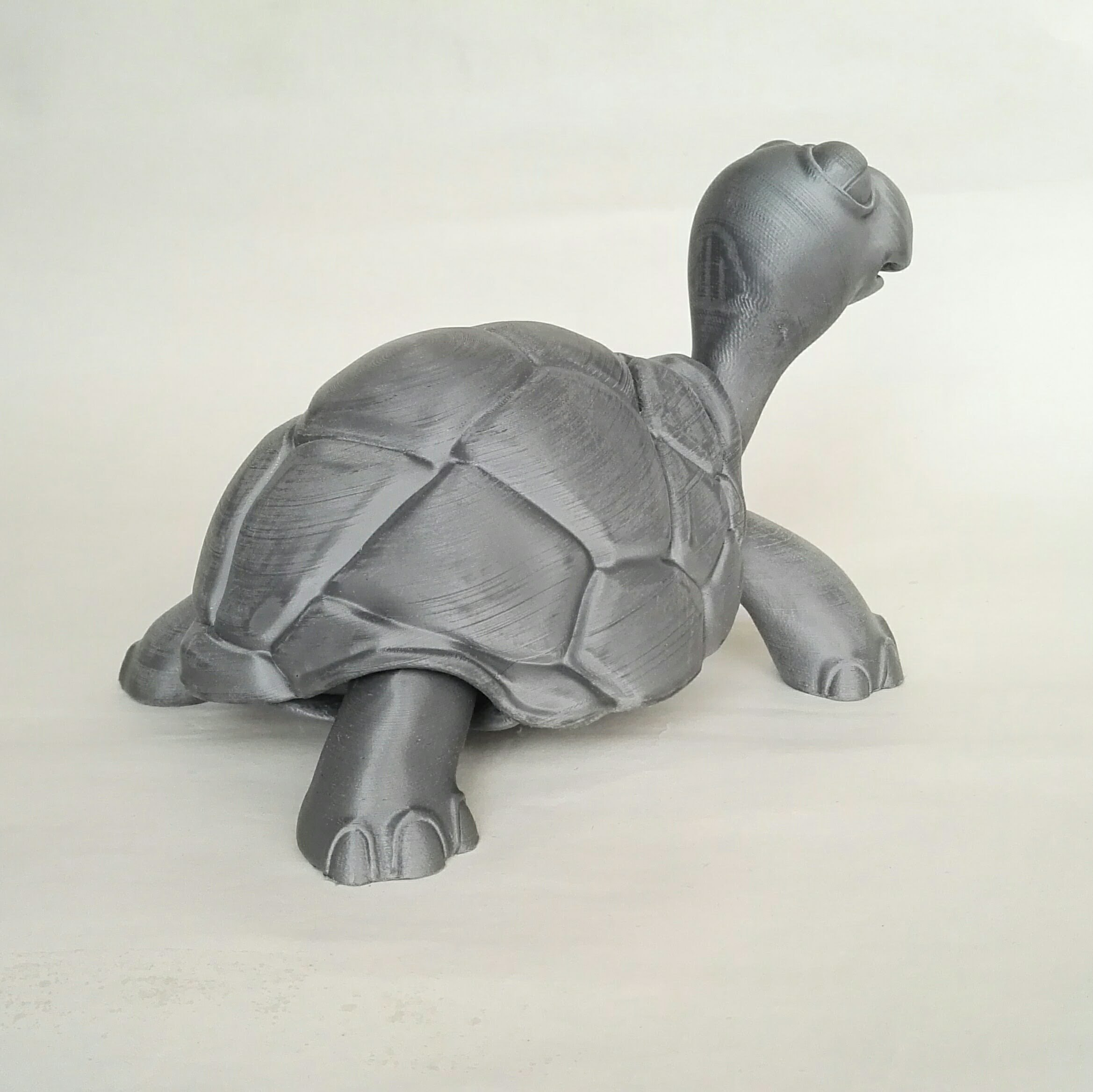 IMG_20180501_181543.jpg Download STL file Turtle • 3D print model, didoff