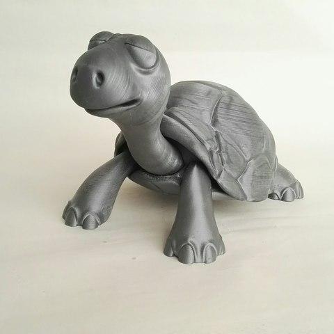 IMG_20180501_181350.jpg Download STL file Turtle • 3D print model, didoff