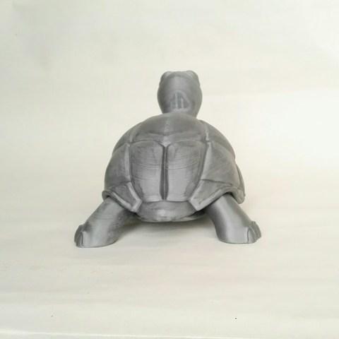 IMG_20180501_181716.jpg Download STL file Turtle • 3D print model, didoff