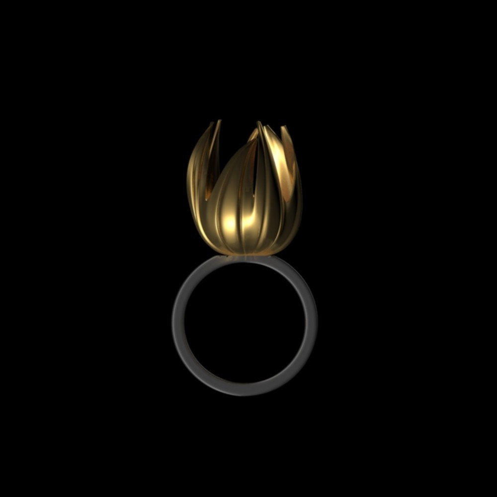 blsm.jpg Download OBJ file Blossom • 3D print object, josephkey