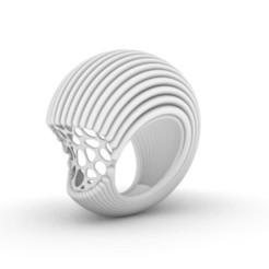 Télécharger objet 3D Nautilus, josephkey