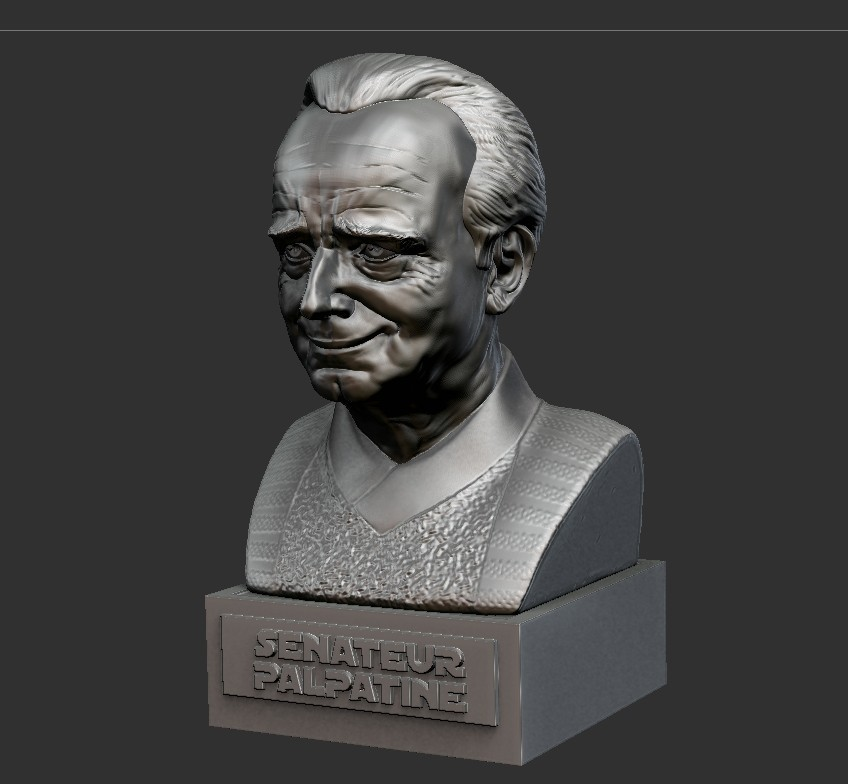 04.jpg Download STL file PALPATINE • 3D print template, thierry3D