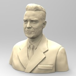 3D file ROBBIE WILLIAMS, thierry3D