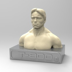 untitled.jpg Download STL file THE TERMINATOR T-800 • 3D printable model, thierry3D