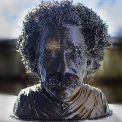 Free 3D printer files Hairy Einstein, PrintThatThing