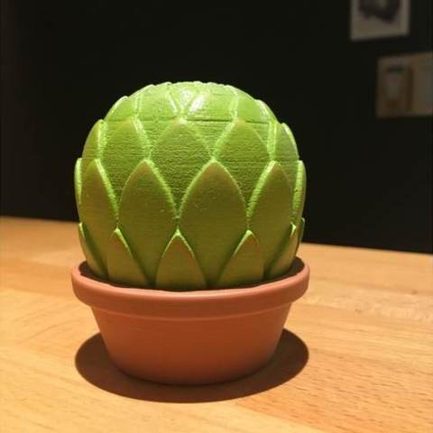b673c54c0af046588d6a294a53d4dfcc_preview_featured.jpg Download free STL file Small potted succulents • 3D printing model, tone001
