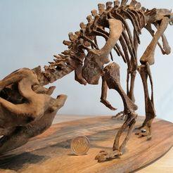 IMG_20200607_104239.jpg Télécharger fichier STL Squelette de dinosaure - Psittacosaurus V3 • Objet à imprimer en 3D, Think3dprint