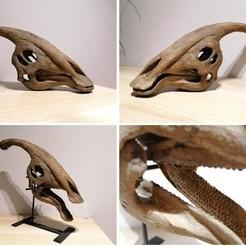 parasaur 1.jpg Download STL file Dinosaur skull - Parasaurolophus • 3D printing model, Think3dprint
