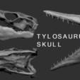 Download 3D print files Mosasaur Skull 3D Print, Think3dprint