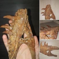 Imprimir en 3D Dinosaurio - Nanotyrannus Sólo maxilar superior!, Think3dprint