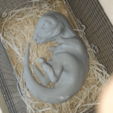 20190807_124747.png Download STL file Baby Dinosaur - Sleeping • 3D printable model, Think3dprint