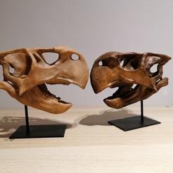 Télécharger fichier imprimante 3D Dinosaures - Crâne de Psittacosaurus 3d, Think3dprint