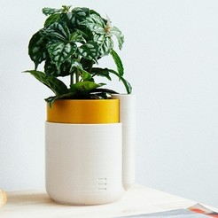 modelo stl gratis Self-Watering Planter (Small), parallelgoods