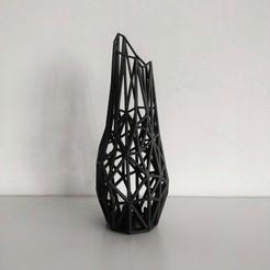 Download free 3D model Wired Vase, StudioKubuz