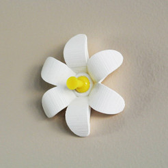 Free 3D printer files Flower-shaped Push pin #1, WallTosh