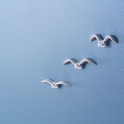 Free 3D file Seagull push-pin, WallTosh