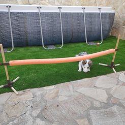 1.jpg Download STL file Adjustable dog Agility jump / Salto ajustable para perros Agility • Object to 3D print, villamany