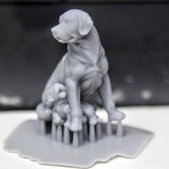 Free 3d printer files dogs sculpture, pim_be