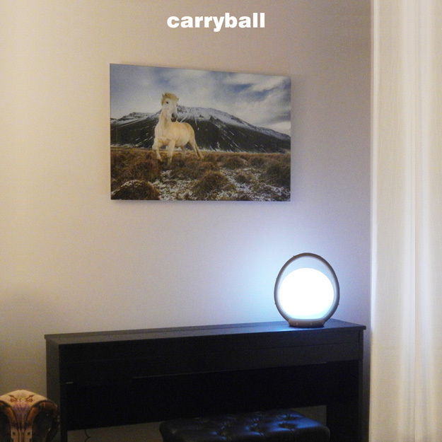 Carryball-1.jpg Download free STL file Carryball • Model to 3D print, djgeenen