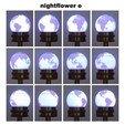 Télécharger modèle 3D gratuit Nightflower-e, djgeenen