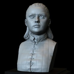 Download STL file Arya Stark (Maisie Williams) - Game of Thrones, 3d Printable Model, Bust, sidnaique