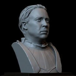 Download 3D print files Brienne of Tarth from Game of Thrones, portrait, Bust, 200mm, sidnaique