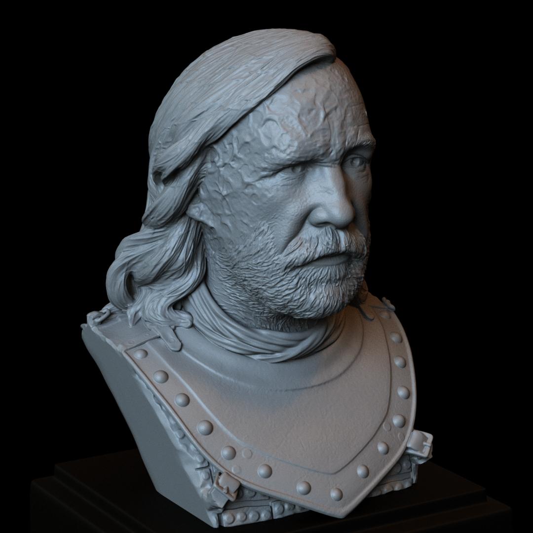 Sandor07.RGB_color.jpg Download STL file Sandor Clegane aka The Hound from Game of Thrones - 3d print model, bust, portrait • 3D printing object, sidnaique