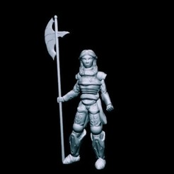 Download free STL Mercy DuLanc, Knight of the Rose (32mm scale), Dutchmogul