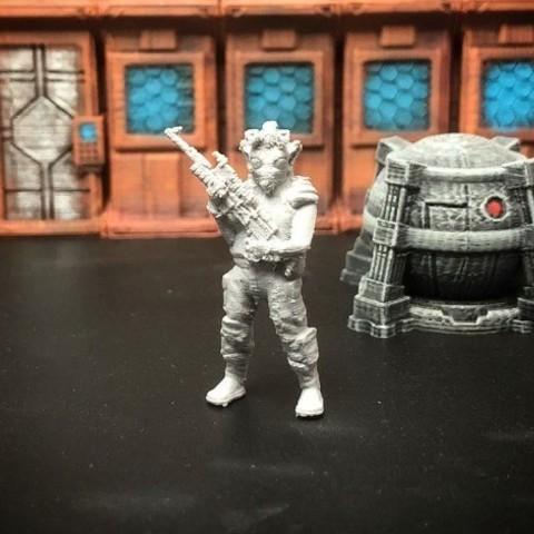 Free 3D model Rodian Rebel Trooper (FDM optimized, 28mm/Heroic scale), Dutchmogul