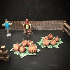Free STL file Townsfolke: Pumpkin Patch (28mm/32mm scale), Dutchmogul