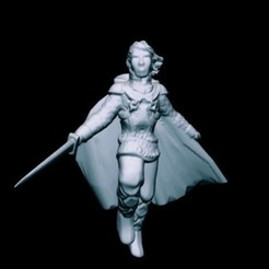 Download free 3D printing models Twilinor, Elvish Champion (32mm scale), Dutchmogul