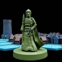 Photo_Sep_01_1_21_02_PM.jpg Download free STL file Pocket-Tactics: Town Guard • Object to 3D print, Dutchmogul