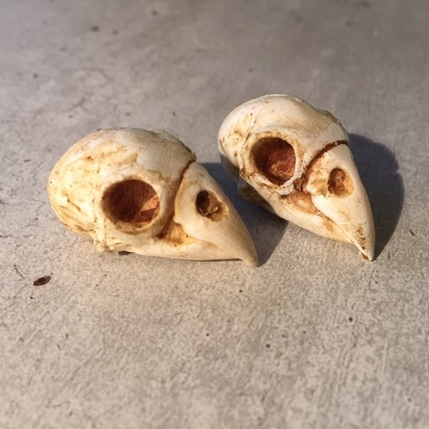 Download STL file Parrot skull • Object to 3D print, Wupsje
