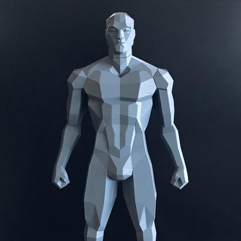 Télécharger fichier imprimante 3D Faible Poly Figure v2, biglildesign