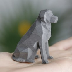 beto thingiverse 2.jpg Download free STL file Low Poly Dog - Beto • 3D print object, flowalistik