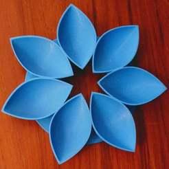 IMG_20201129_102212.jpg Download free STL file Petals4 • Design to 3D print, Birk