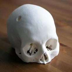 Free 3D printer file Cerebrix Human Skull, Cults