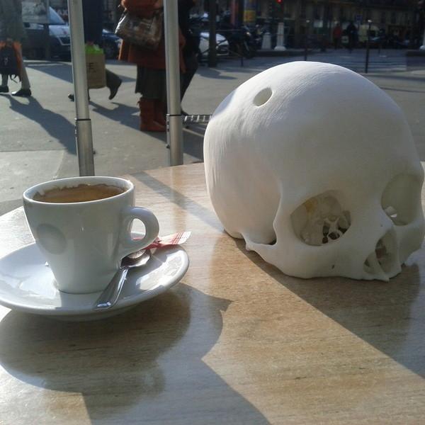 Cr_ne_humain_Cerebrix_2_-_Cults_-_by_Prevue.jpg Télécharger fichier STL gratuit Crâne humain Cerebrix • Modèle à imprimer en 3D, Cults