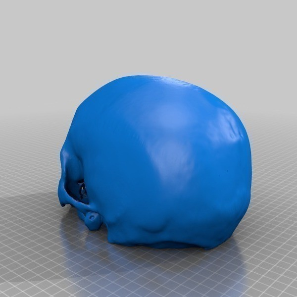Cr_ne_humain_Cerebrix_3_-_Cults_-_by_Prevue.jpg Download free STL file Cerebrix Human Skull • 3D printing template, Cults