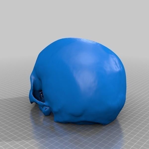 Cr_ne_humain_Cerebrix_3_-_Cults_-_by_Prevue.jpg Télécharger fichier STL gratuit Crâne humain Cerebrix • Modèle à imprimer en 3D, Cults
