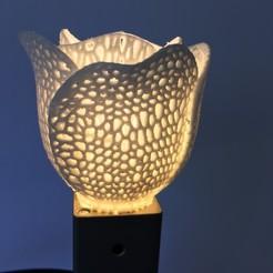 Télécharger fichier impression 3D Tulipe voronoi, spechtled