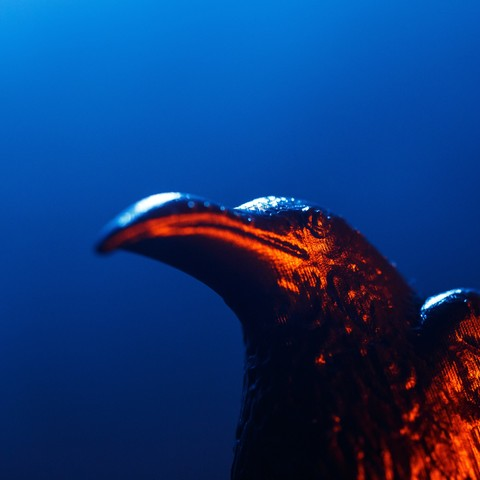 VIKINGS_3D_PROPHECY_EPISODE_416-3.jpg Download free STL file Raven - 3D Prophecy - Season 4, Episode 16 - Crossing • 3D printable template, 3DBROOKLYN
