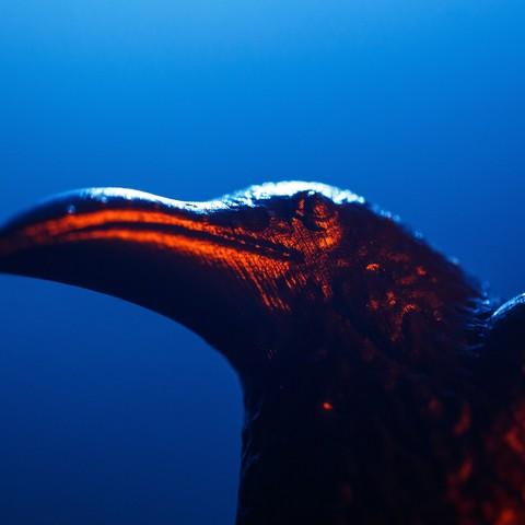 VIKINGS_3D_PROPHECY_EPISODE_416-4.jpg Download free STL file Raven - 3D Prophecy - Season 4, Episode 16 - Crossing • 3D printable template, 3DBROOKLYN