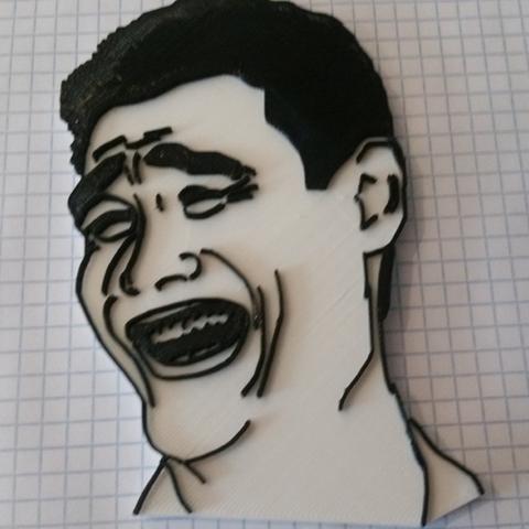 Capture d'écran 2016-12-28 à 09.37.52.png Télécharger fichier STL gratuit têtes de memes • Objet pour imprimante 3D, ChaosCoreTech
