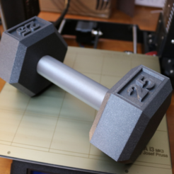 Download free STL file Dumbbell - 25lbs • 3D print model, ChaosCoreTech