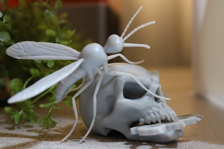 IMG_2213.JPG Télécharger fichier STL gratuit Modèle Mosquito • Objet pour imprimante 3D, ChaosCoreTech