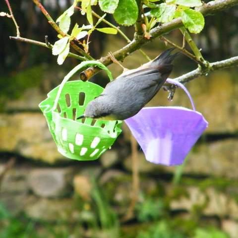 3d-fabric-jean-pierre-feeder-water_trough-1.jpg Download STL file bird feeder to hang • 3D printable template, 3d-fabric-jean-pierre