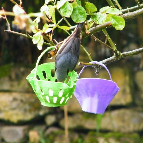 3d-fabric-jean-pierre-feeder-water_trough-2.jpg Download STL file bird feeder to hang • 3D printable template, 3d-fabric-jean-pierre